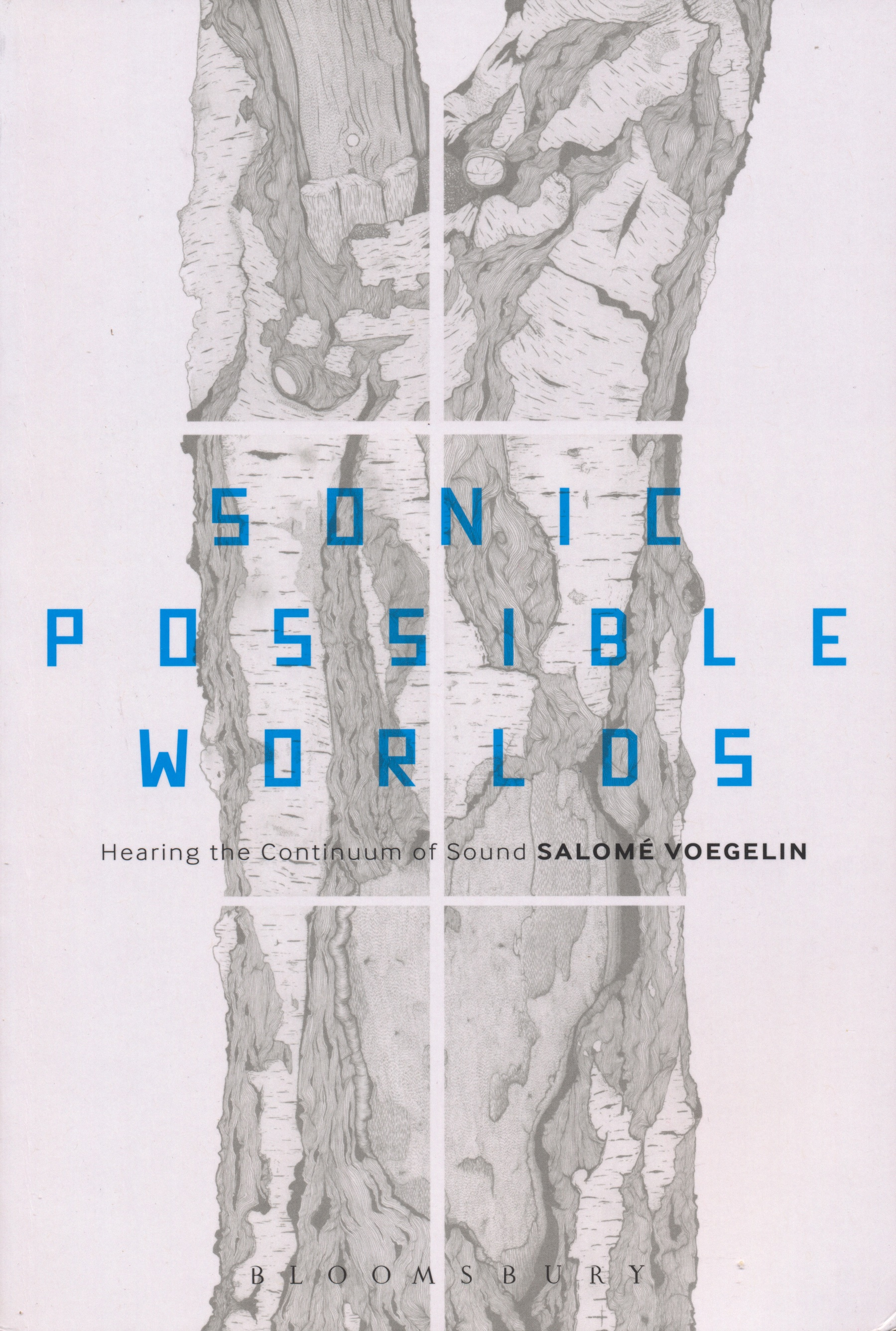 "Book cover - ""sonic possible worlds"""