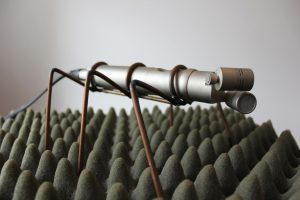 The sculpture - a microphone with wire legs standing on a bed of grey acoustic foam - the microphone becomes an insect