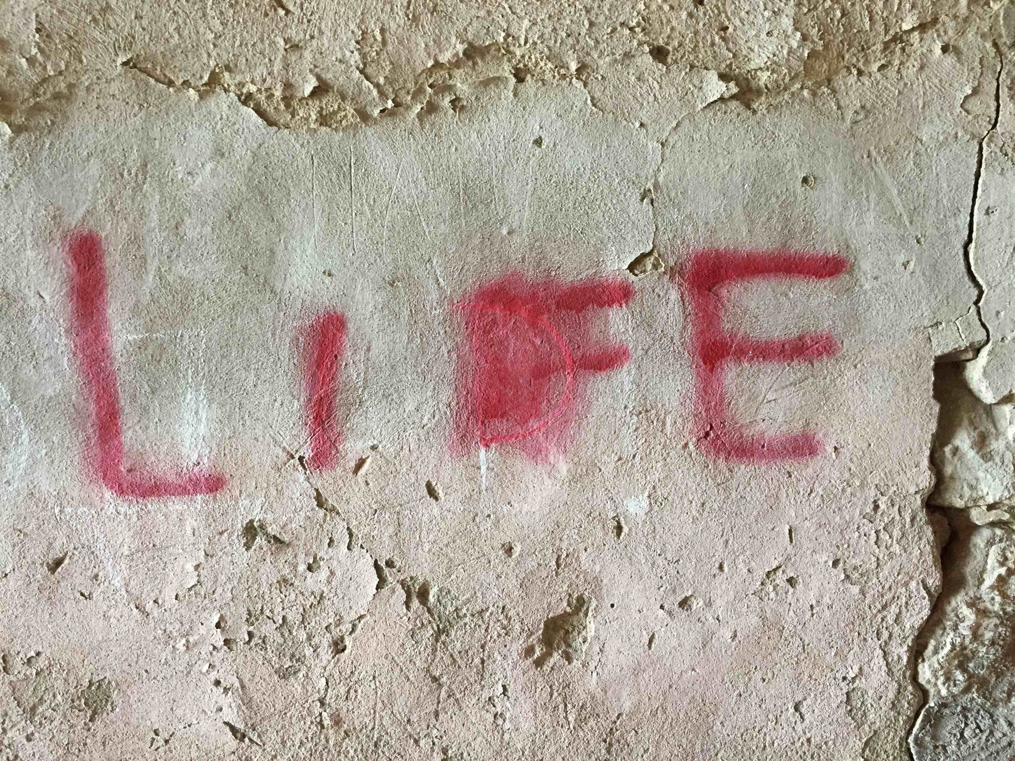 """life"" spraypainted onto a concrete wall"