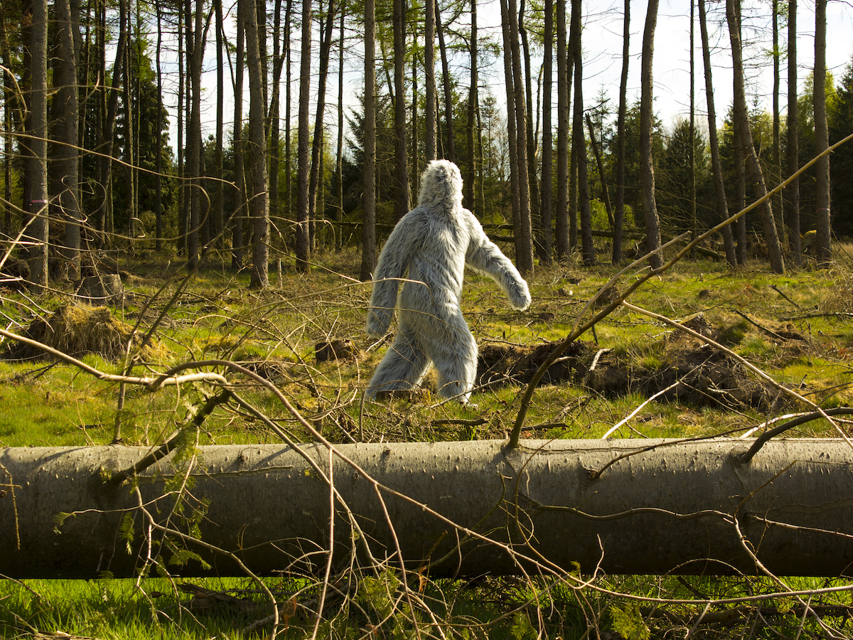 A person walking through a forrest in a white fluffy suit