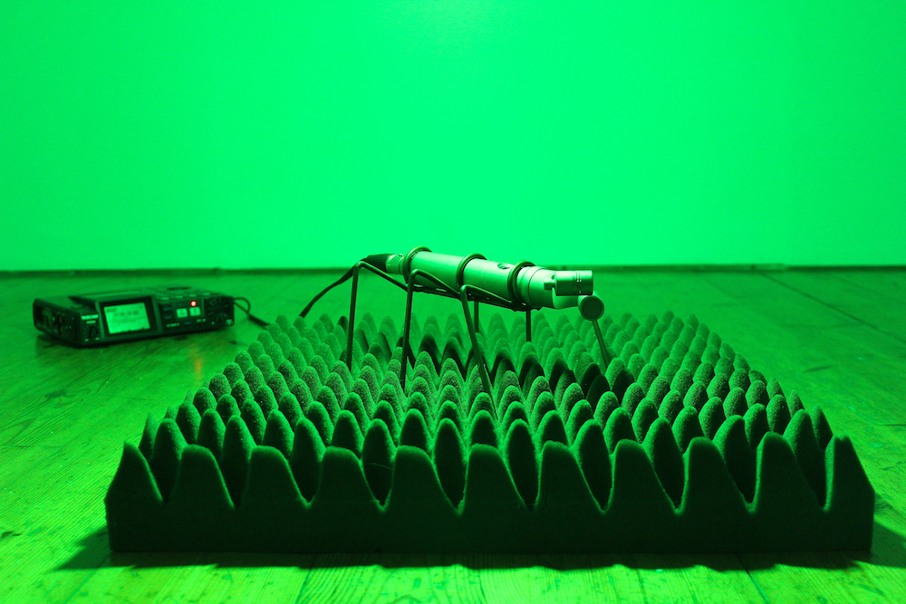 A microphone insect sculpture sat on a panel of acoustic foam - under a bright green light