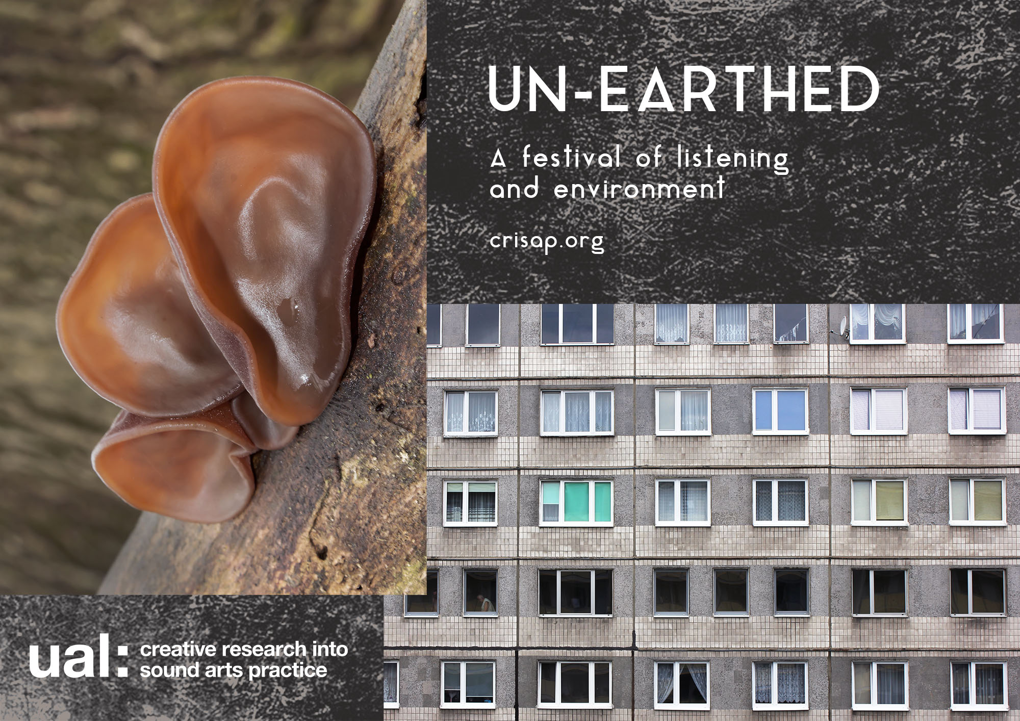 "mushrooms that look like ears on a branch, collages with a building facade and text ""unearthed a festival of listening and environment, crisap.org"""