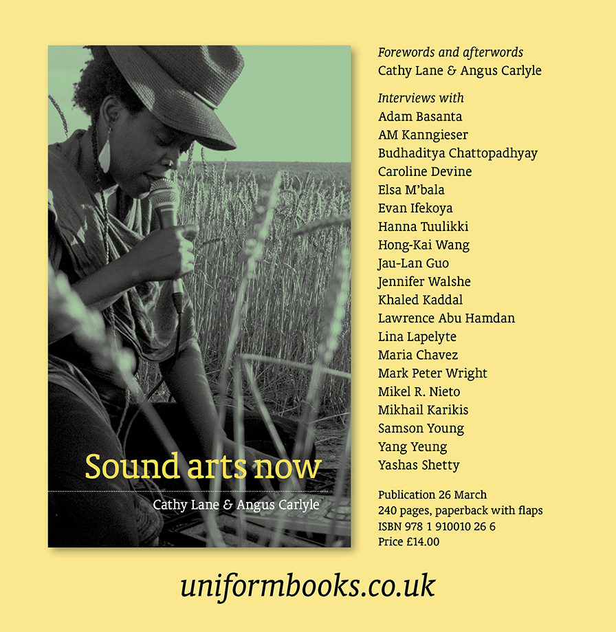 "Book cover ""Sound Arts Now"" with a performance image, list of names and web link to Uniform books"